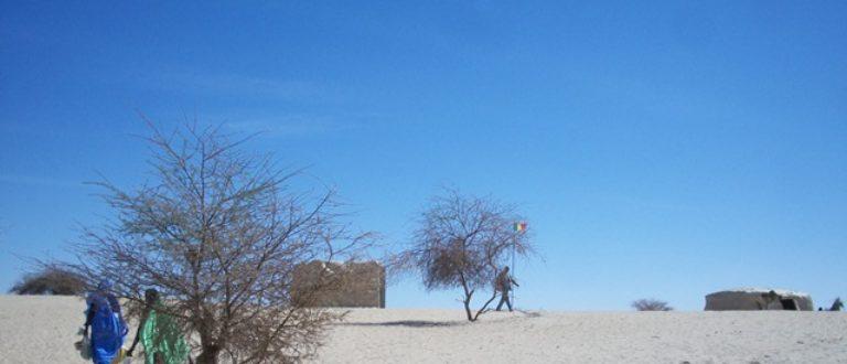 Article : Le nord du Mali est libre et après?